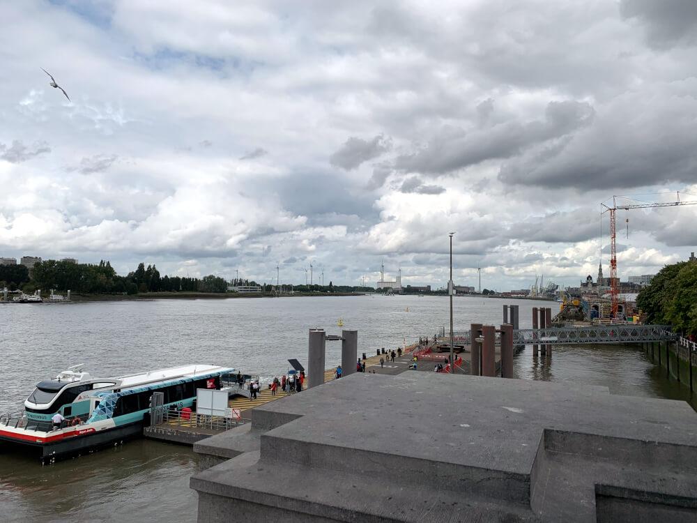 Der Fluss Schelde in Antwerpen
